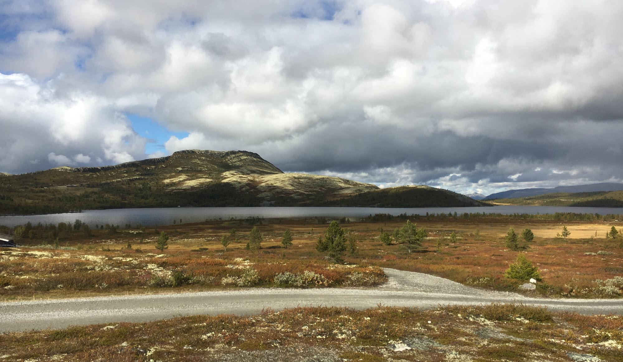 Svartfjellet ved Flaksjøen på Venabygdsfjellet i Ringebu kommune
