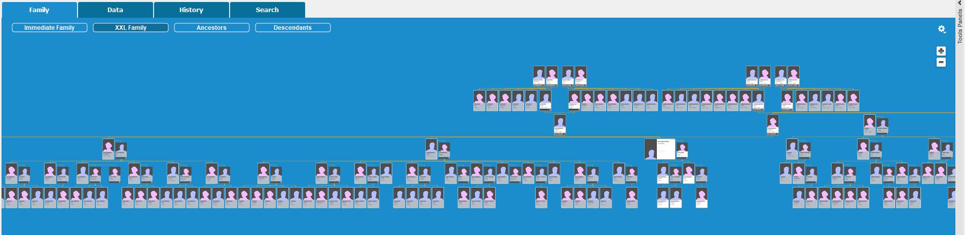 Utsnitt av interaktivt slektstre med 6 generasjoner og familier med opptil 13 barn (klikk for full størrelse)